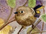 Bird Mini Painting 2