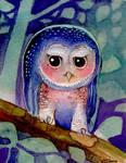 moon night owl