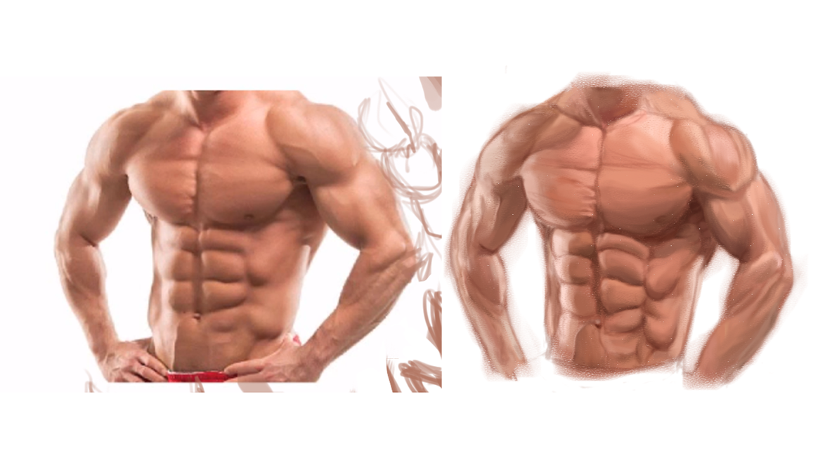 study muscles and anatomy of male upper body 1 by PlayZGamer on ...