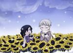 Sunflowers Field - 4 myoo89