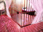 sissy jail cell