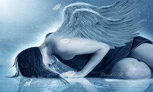 Angel,s breath