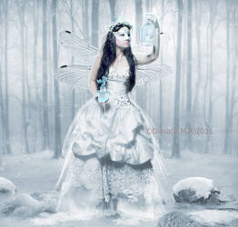 Magical essence  the winter