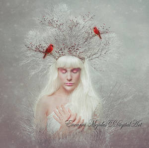 Soul Of Winter by DiosaEMR