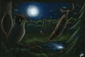 Owl at Night by LupiArts