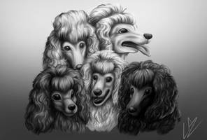 Poodle Group by LupiArts