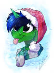 Merry Christmas Pone