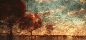 Fall by 38DDmisswhiplash
