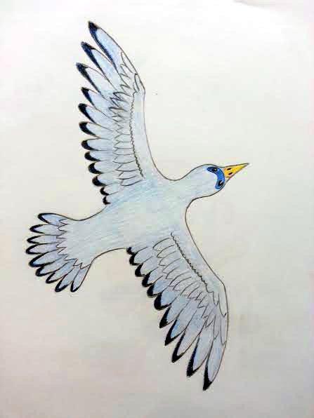 Blue Dove by Zaegandun