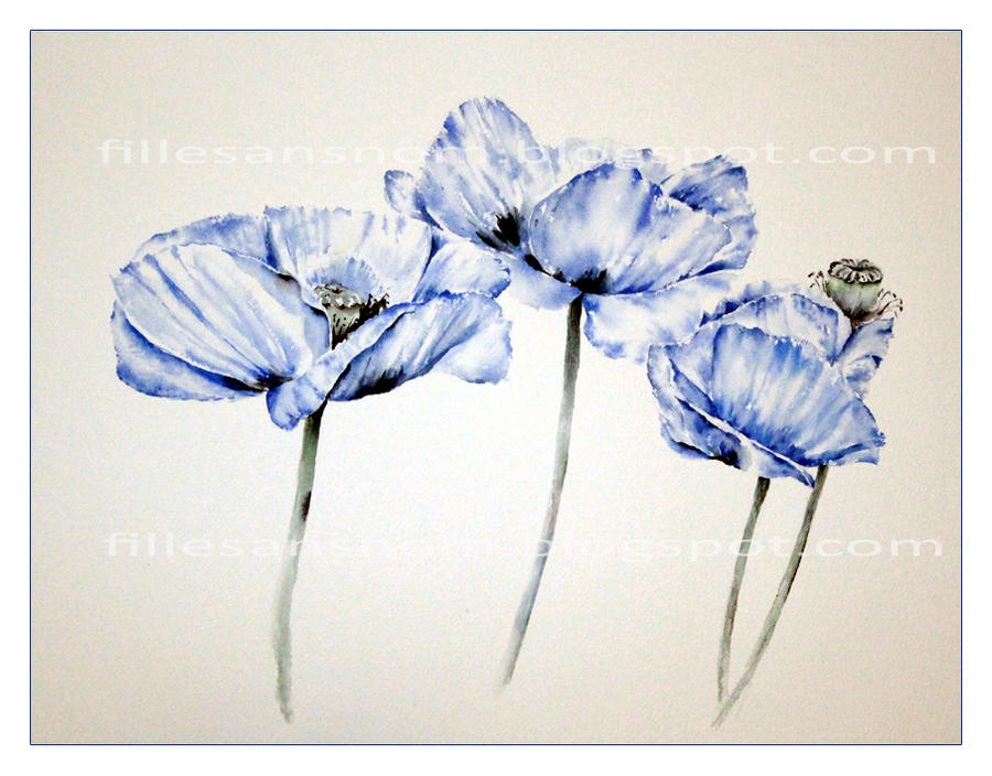Poppy_Blue_S by janipabel