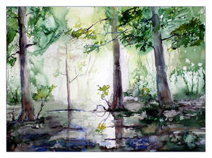 der letzter Maitag im Wald