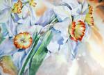 Daffodils I 2021 55x75cm
