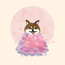 Sakura Petals Doge