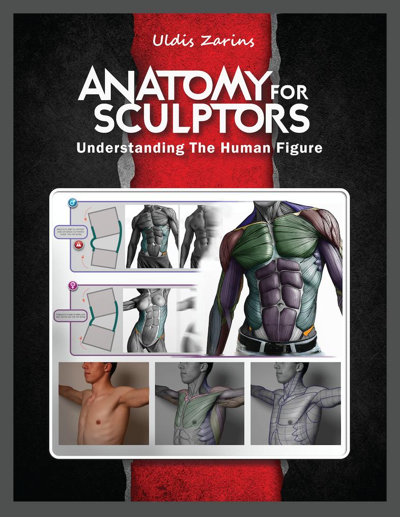 ANATOMY FOR SCULPTORS cover design by anatomy4sculptors on DeviantArt