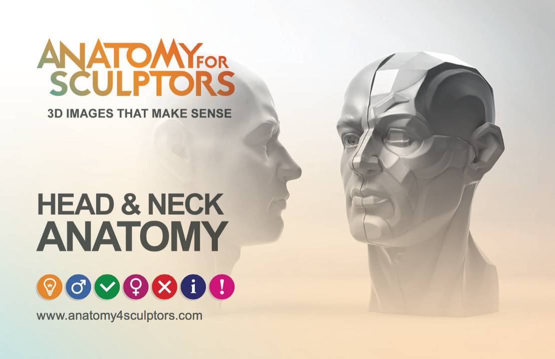 Anatomy4sculptors HEAD and NECK ANATOMY book by anatomy4sculptors on ...