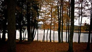 Samhain 2009 - 2 by GeoffroyVincens