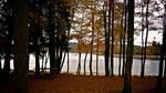 Samhain 2009 - 2