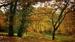 Samhain 2009 - 4