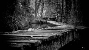 Wooden Bridge by GeoffroyVincens
