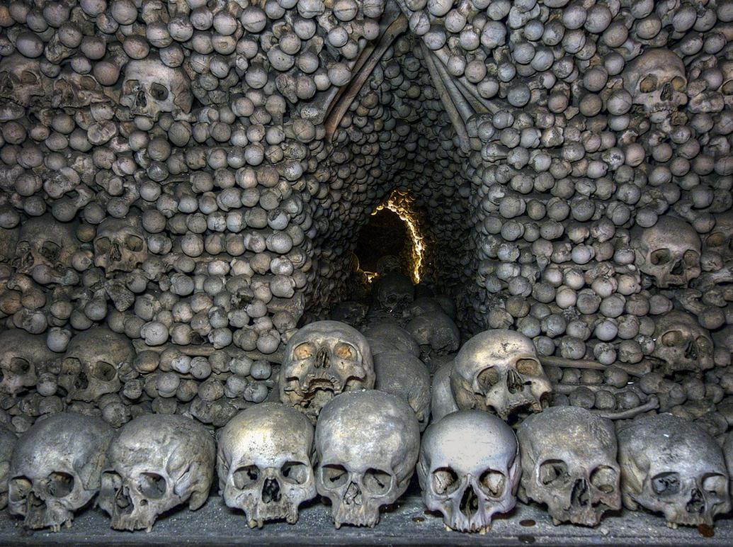 Skulls and Bones .. by MisterKrababbel