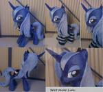 Wet mane Luna with socks