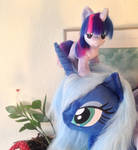 Luna and mini twilight hanging out