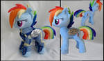 Rainbow Dash crystal wars warrior