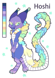 Hoshi The Starry Dragon Reference Sheet