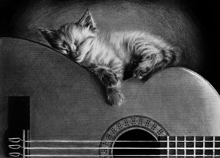 Cat 3 by tajus