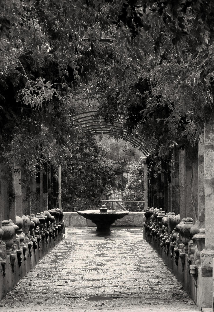 secret place in b/w by guinever87