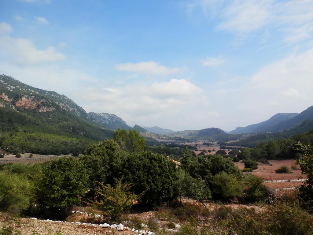 Es Pla - Mallorca by guinever87