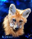 Kamali as a Maned Wolf