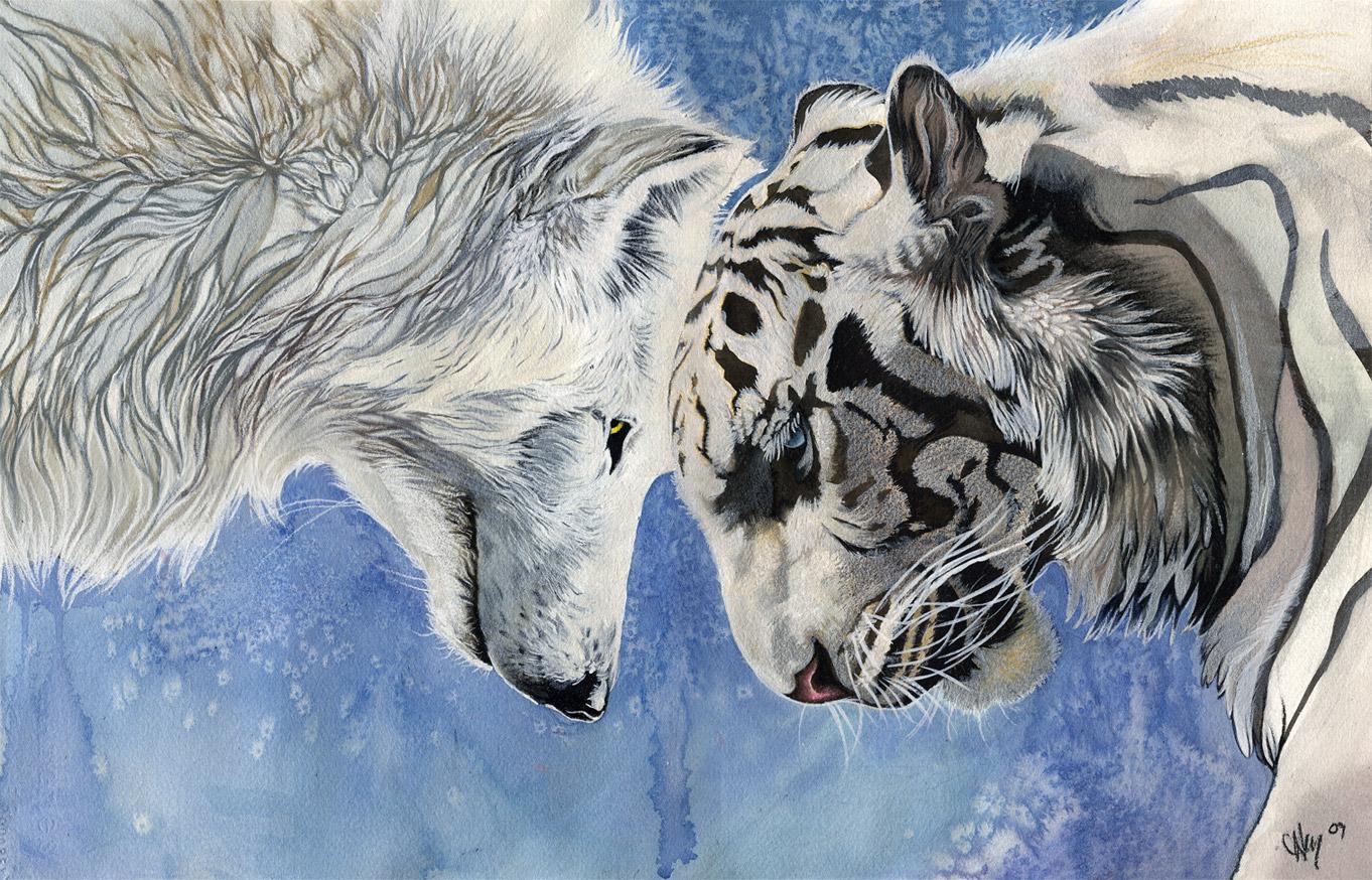 Фурри воины волки лисы картинки 21 фотография