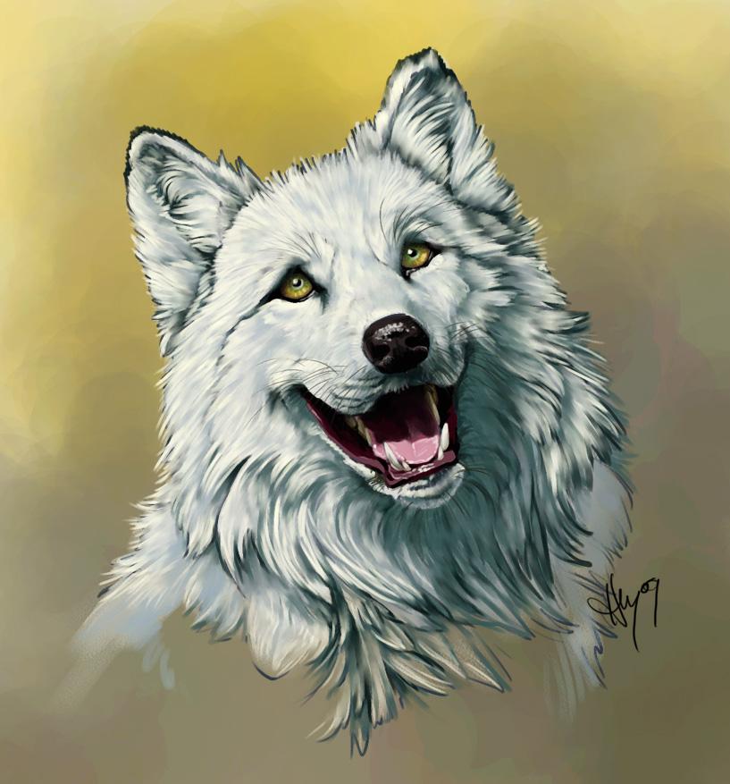 Birthday Woof by Novawuff