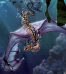 Sea Dragon Close Up