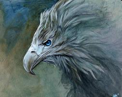 eyes full of blue by Novawuff