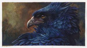 blueburd by Novawuff