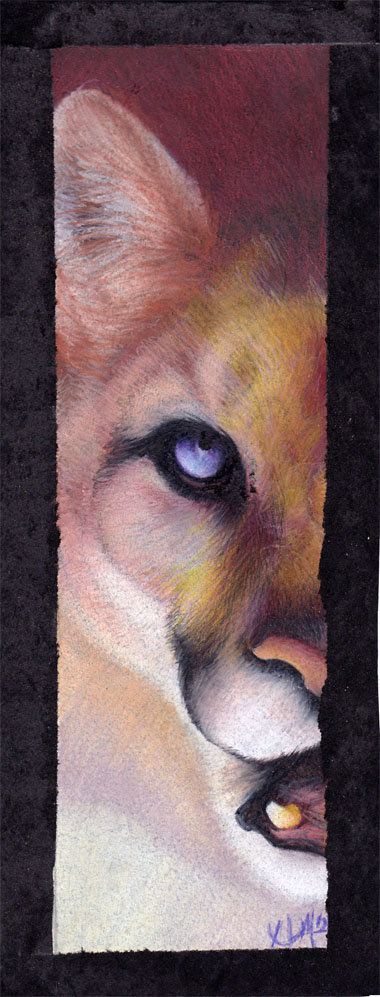 half a cougar by Novawuff