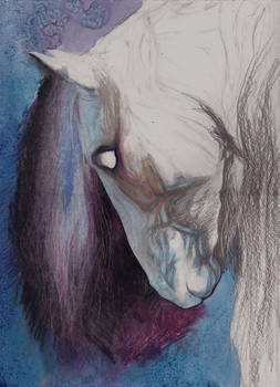 Ghost in the Horse