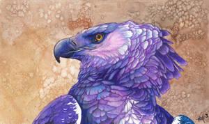 paint me purple