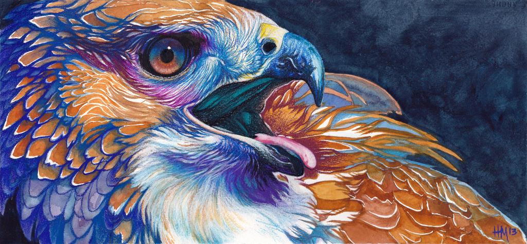 FireHawk Fundraiser Auction! by Novawuff