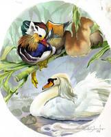 Swandog's Pond by Novawuff