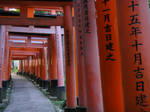 The Red Gates of Inari