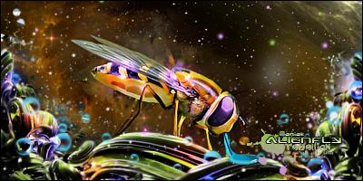 Alien Fly by Maniakuk