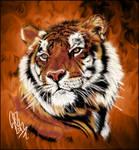Tiger DP by Maniakuk