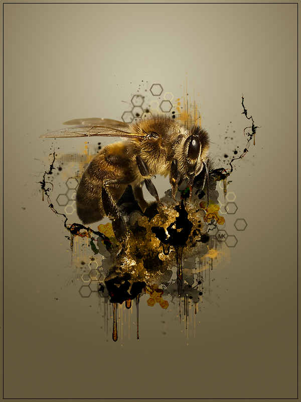 Maniak Portfolio Honey_trap_by_maniakuk-dbcw3x7