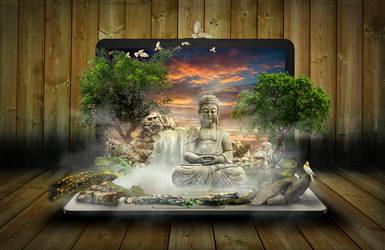 Laptop Sanctuary