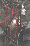 Shibari: Gorgone Medusa