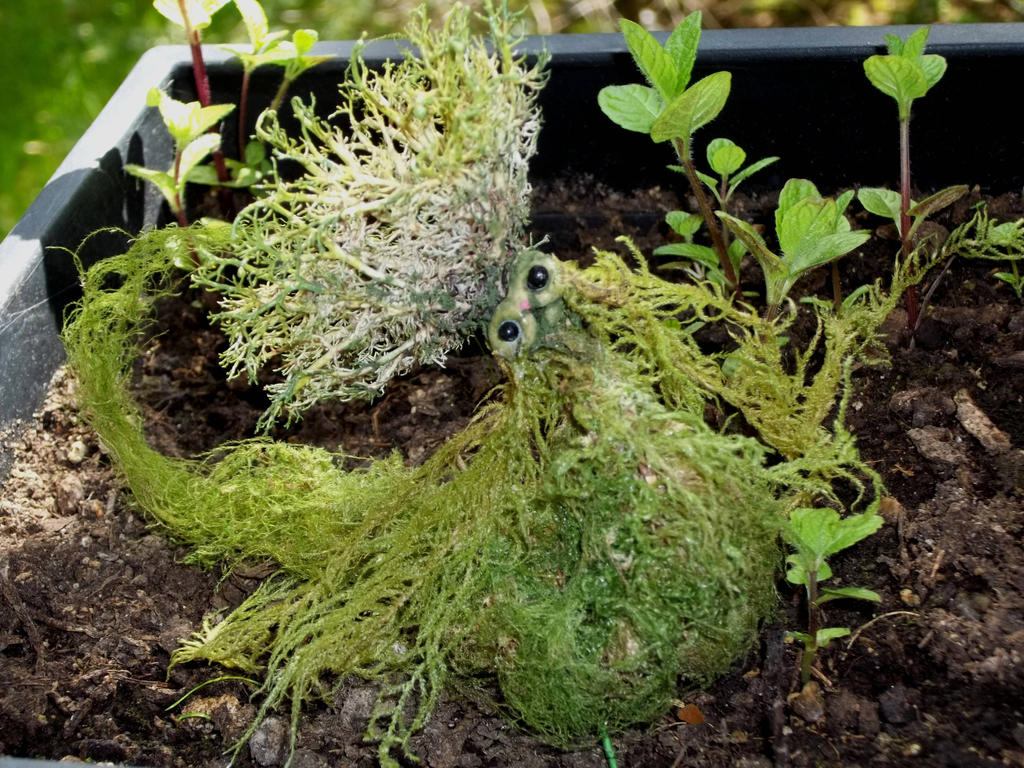 Moss Mew by Pirkleations