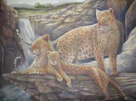 Jaguar Family by Wildatart24